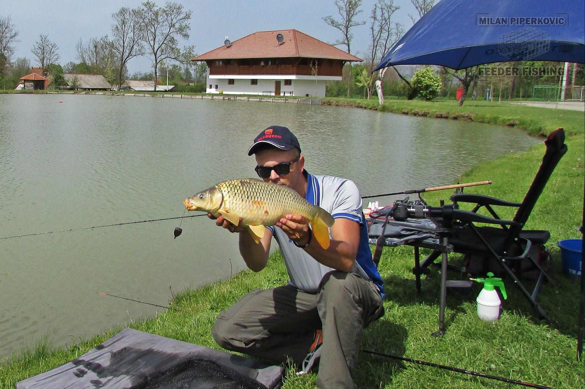 Method Feeder Fishing